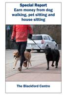 Report on dog walking