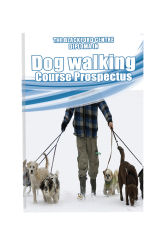 Dog Walking Course brochure