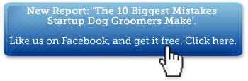 Get a Free Dog Grooming Report: The 10 Biggest Mistakes Startup Dog Groomers Make