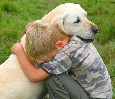 Paying tribute to your dog