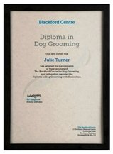 One Of The Best Dog Grooming Courses You Can Do