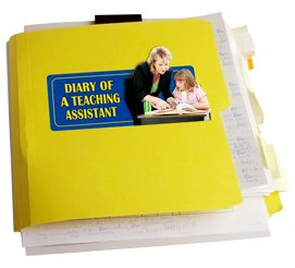 Diary of a teaching assistant